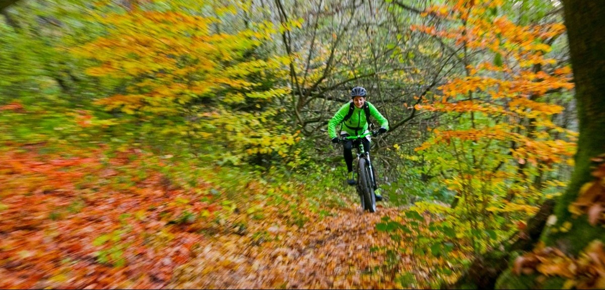 Herbstaction mit Fahrrad
